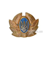 Кокарда общевойсковая рядовых и сержантов А1