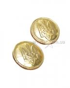 Пуговица МО Украины золото