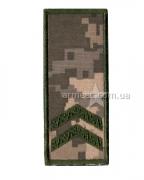 Погон ЗСУ младший сержант на липучке s8