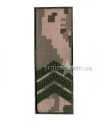 Погон ЗСУ сержант s3