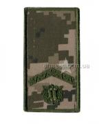 Погон ЗСУ курсант-старший солдат на липучке А1