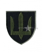 Шеврон Сухопутных войск А6