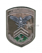 Нашивка Коледж сержантського складу А1