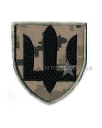 Шеврон Cухопутные войска n7
